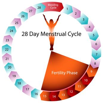 Akceptacja cyklu płodności warunkiem przyjęcia etyki katolickiej